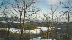 205 Trout Lake, Bolton, NY 12814