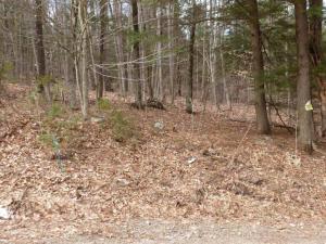 0 Spring Woods, Lake George, NY 12845